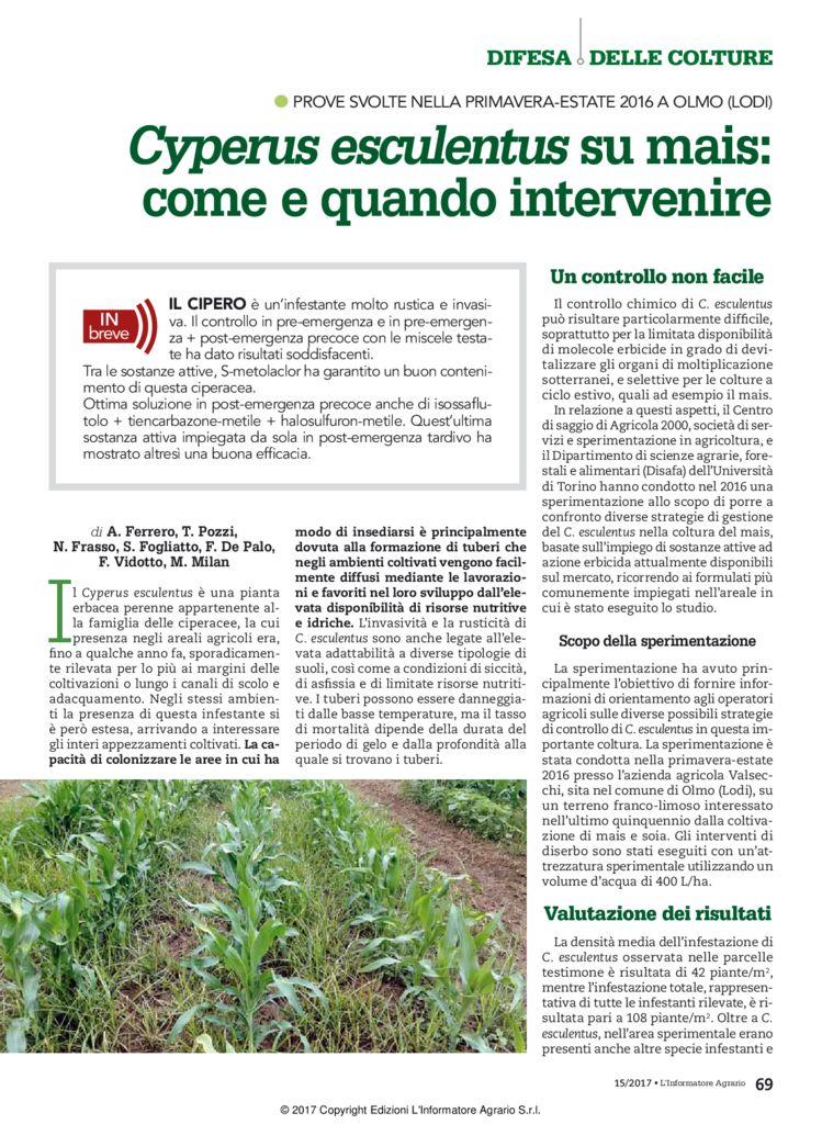 thumbnail of Articolo Cyperus mais_Inf Agr